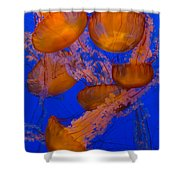 Pacific Sea Nettle Cluster 2 Shower Curtain