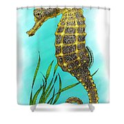 Pacific Seahorse Shower Curtain