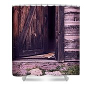 Package By Open Front Door Shower Curtain