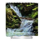 Packer Falls Vert 1 Shower Curtain