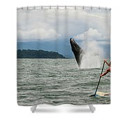 Paddle Boarders And Humpback Whale Shower Curtain