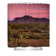 Paint It Pink Sunset  Shower Curtain