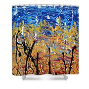 Paint Number Fifteen Shower Curtain