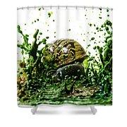 Paint Sculpture And Snail 3 Shower Curtain