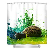 Paint Sculpture And Snail 4 Shower Curtain