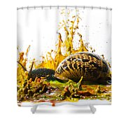 Paint Sculpture And Snail  Shower Curtain