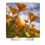 Paint The Desert With Poppies  Shower Curtain