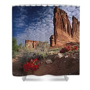 Paintbrush And The Organ Rock Shower Curtain by Tim Fitzharris
