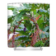 Painted Banana Plant Shower Curtain