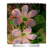 Painted Beauty Shower Curtain