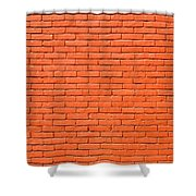 Painted Brick Wall Shower Curtain