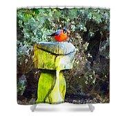 Painted Bullfinch Trio Shower Curtain