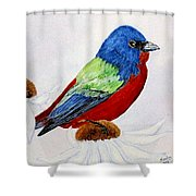 Painted Bunted Shower Curtain