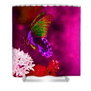 Painted Buterfly Shower Curtain