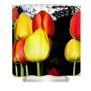 Painted Country Tulips Shower Curtain