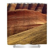 Painted Curves Shower Curtain