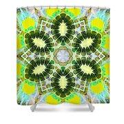 Painted Cymatics 181.66hz Shower Curtain