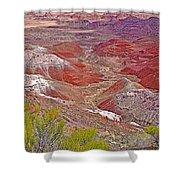 Painted Desert From Rim Trail In Petrified Forest National Park-arizona Shower Curtain