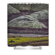 Painted Hills Bloom Shower Curtain