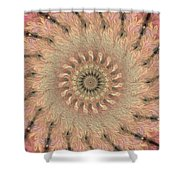 Painted Kaleidoscope 1 Shower Curtain
