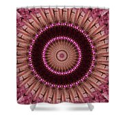Painted Kaleidoscope 14 Shower Curtain