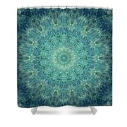 Painted Kaleidoscope 5 Shower Curtain