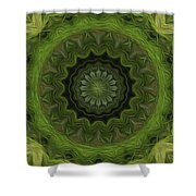 Painted Kaleidoscope 8 Shower Curtain
