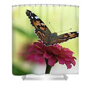 Painted Lady Butterfly On Zinnia Shower Curtain