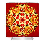 Painted Lotus Xi Shower Curtain