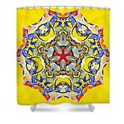 Painted Lotus Xiii Shower Curtain