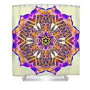 Painted Lotus Xiv Shower Curtain