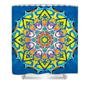 Painted Lotus Xv Shower Curtain