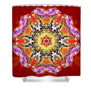 Painted Lotus Xvii Shower Curtain