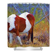 Painted Marsh Mare Shower Curtain