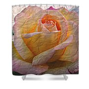 Painted Paper Rose Shower Curtain