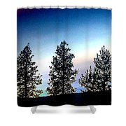 Painted Pine Tree Trio Shower Curtain