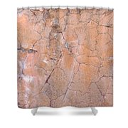 Painted Pink Concrete Shower Curtain