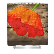 Painted Poppy On Wood Shower Curtain