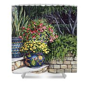 Painted Pots Shower Curtain