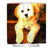 Painted Puppy Shower Curtain