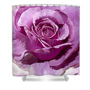 Painted Purple Rose  Shower Curtain