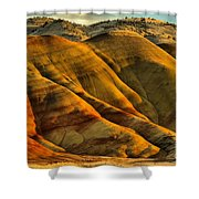 Painted Red And Gold Shower Curtain