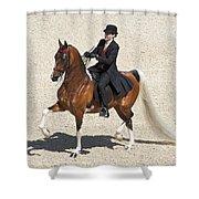Painted Saddlebred Shower Curtain