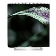 Painted Shades Of Green - 3 Shower Curtain