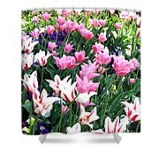 Painted Spring Exhibit Shower Curtain