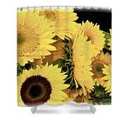 Painted Sunflowers Shower Curtain