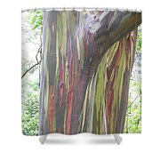 Painted Tree Shower Curtain