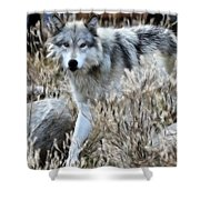 Painted Wolf Shower Curtain