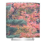 Painting Autumn Shower Curtain