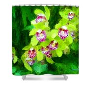 Painting Of Green Orchids Shower Curtain